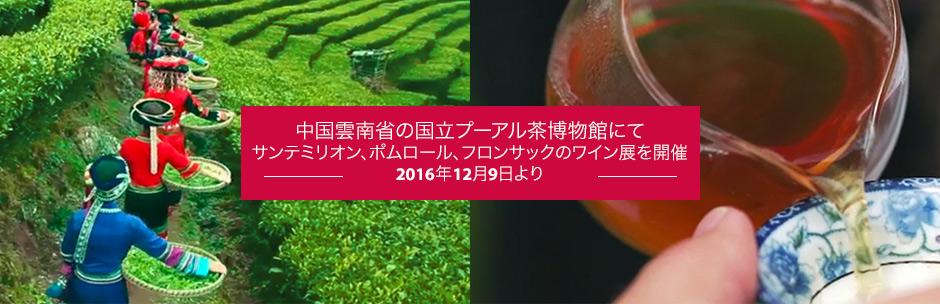 中国雲南省の国立プーアル茶博物館にて