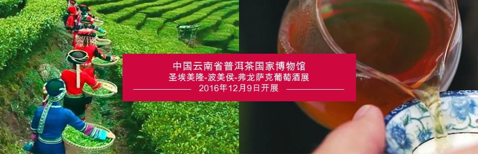 中国云南省普洱茶国家博物馆